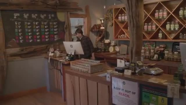 From seed to sale: retail, Retail, Go legal! : cultivating Oregon's cannabis...