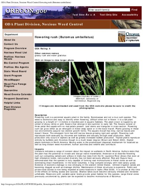 "This archived document is maintained by the Oregon State Library as part of the Oregon Documents Depository Program.  It is for informational purposes and may not be suitable for legal purposes., Title from PDF caption (viewed on Aug. 17, 2010), Part of the series Oregon state noxious weed list, Converted from HTML, ""March 05, 2009."", Mode of access: Internet from the Oregon Government Publications Collection."