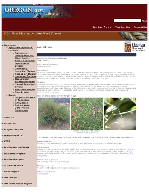 "This archived document is maintained by the Oregon State Library as part of the Oregon Documents Depository Program.  It is for informational purposes and may not be suitable for legal purposes., Title from PDF caption (viewed on Sept. 8, 2010), Part of the series Oregon state noxious weed list, Converted from HTML, ""May 14, 2007."", Mode of access: Internet from the Oregon Government Publications Collection."