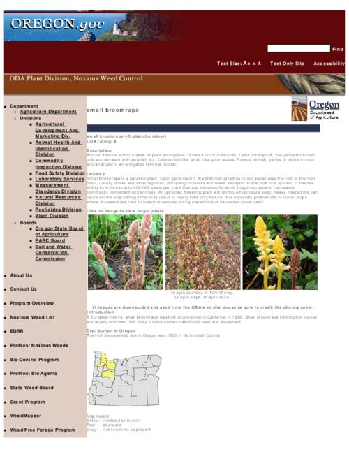 "This archived document is maintained by the Oregon State Library as part of the Oregon Documents Depository Program.  It is for informational purposes and may not be suitable for legal purposes., Title from PDF caption (viewed on Sept. 13, 2010), Part of the series Oregon state noxious weed list, Converted from HTML, ""February 25, 2008."", Mode of access: Internet from the Oregon Government Publications Collection."