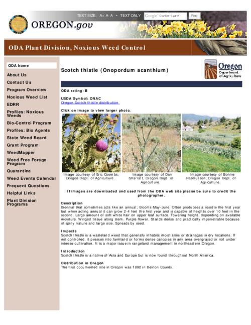 "This archived document is maintained by the Oregon State Library as part of the Oregon Documents Depository Program.  It is for informational purposes and may not be suitable for legal purposes., Title from PDF caption (viewed on Apr. 17, 2012), Part of the series Oregon state noxious weed list, Converted from HTML, ""April 15, 2012""--P. [2], Mode of access: Internet from the Oregon Government Publications Collection."