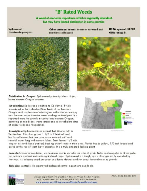 This archived document is maintained by the Oregon State Library as part of the Oregon Documents Depository Program.  It is for informational purposes and may not be suitable for legal purposes., Title from PDF caption (viewed on August 3, 2015)., Part of the series Oregon state noxious weed list., Mode of access: Internet from the Oregon Government Publications Collection., Text in English.