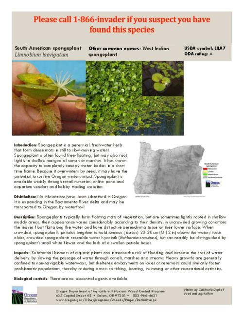 This archived document is maintained by the Oregon State Library as part of the Oregon Documents Depository Program.  It is for informational purposes and may not be suitable for legal purposes., Title from PDF caption (viewed on July 27, 2015)., Part of the series Oregon state noxious weed list., Mode of access: Internet from the Oregon Government Publications Collection., Text in English.