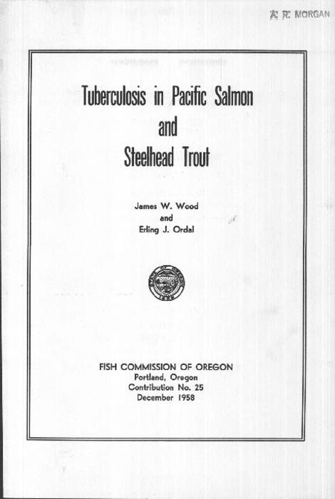 "Introduction -- Initial studies of tuberculosis in salmon -- Pathology and bacteriology -- Studies of tuberculosis in adult spring chinook salmon -- Comparative studies of tuberculosis in wild and hatchery fish -- Tuberculosis in steelhead trout -- Tuberculosis in adult fall chinook salmon -- Miscellaneous observations -- General discussion -- Literature cited, This archived document is maintained by the Oregon State Library as part of the Oregon Documents Depository Program.  It is for informational purposes and may not be suitable for legal purposes., ""December 1958."", Includes bibliographical references (p. 37-38), Mode of access: Internet from the Oregon Government Publications Collection."