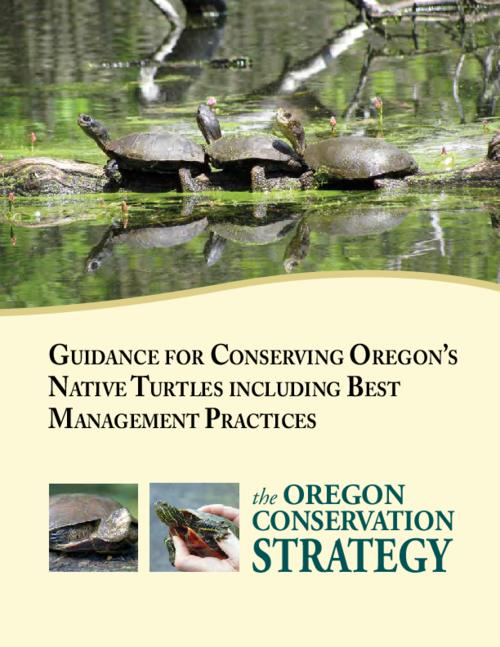 "This archived document is maintained by the Oregon State Library as part of the Oregon Documents Depository Program.  It is for informational purposes and may not be suitable for legal purposes., Title from PDF cover (viewed on May 5, 2015)., ""The Oregon Conservation Strategy."", ""This document includes recommended Best Management Practices for protecting and conserving Oregon's two native turtle species, the western painted turtle and the western pond turtle. . . . this document is intended primarily for use by natural resource and land managers, land use planners, and project managers""--Page i., Includes bibliographical references (page 71)., Mode of access: Internet from the Oregon Government Publications Collection., Text in English."
