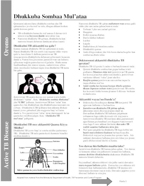"This archived document is maintained by the Oregon State Library as part of the Oregon Documents Depository Program.  It is for informational purposes and may not be suitable for legal purposes., Title from PDF caption (viewed on July 26, 2010), ""Adapted from material from the Minnesota Department of Health, TB Prevention and Control Program."", Mode of access: Internet from the Oregon Government Publications Collection., Text in Oromo"