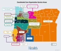 Coordinated care organization service areas
