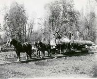 Logs on a rail flatcar pulled by 3 horses
