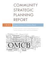 Community strategic planning report : a summary of the 2013 community strategic...