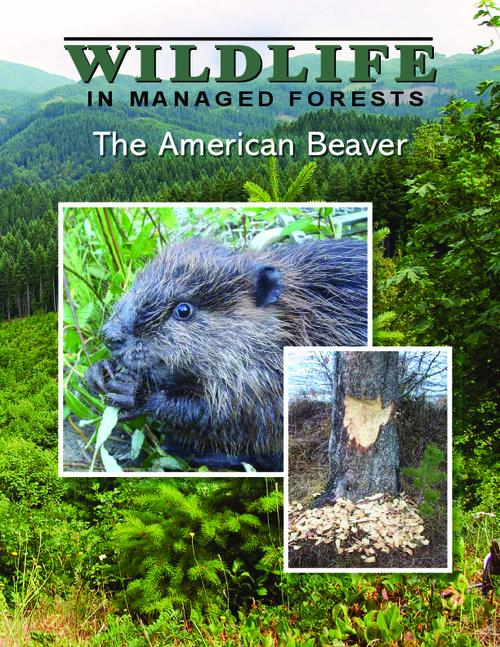 "Title from PDF cover (viewed on December 21, 2016)., ""This publication will summarize beavers' biology and their habitat needs, discuss current research, and provide science-based recommendations for managing lands that include beavers""--Page 2., This archived document is maintained by the Oregon State Library as part of the Oregon Documents Depository Program. It is for informational purposes and may not be suitable for legal purposes., Includes bibliographical references (pages 23-24)., This publication was made possible in part through a grant from Partnership for Forestry Education, Mode of access: Internet from the Oregon Government Publications Collection., Text in English."