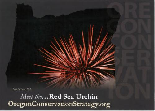 Card issued as part of the Oregon Conservation Strategy initiative., Title from PDF caption (viewed on April 11, 2017)., This archived document is maintained by the Oregon State Library as part of the Oregon Documents Depository Program. It is for informational purposes and may not be suitable for legal purposes., Mode of access: Internet from the Oregon Government Publications Collection., Text in English.
