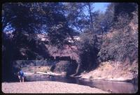 005-O4 Drift Creek covered bridge (Taft (Lincoln City), Upper Drift Creek)