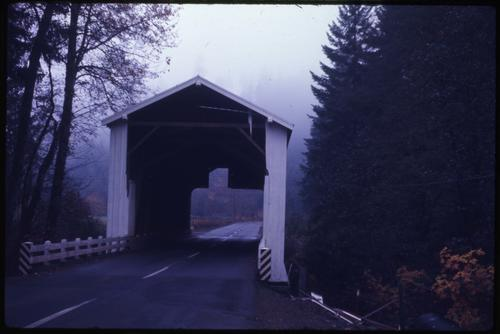 Brumbaugh bridge, 6 miles east of Cottage Grove, Oregon, over Mosby Creek, is a 90 foot Howe covered bridge built in 1948. Location: T21S R2W S18, Photo by Glenn G. Groff., Courtesy of State Library of Oregon.