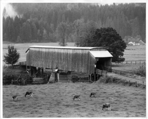 Grays River covered bridge is a 156 foot Howe truss bridge built in 1905 that spans Grays River in Grays River, Wahkiakum County, Washington. The bridge was completely rehabilitated in 1990., Courtesy of State Library of Oregon.