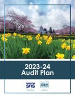 ... audit plan