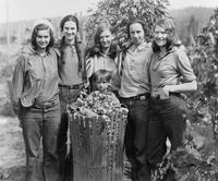 Group of young women in the hop fields of Oregon