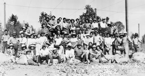 "A large group of hop workers are gathered together for a photo. This photo is from the K. Chikuo Hop Grower and it is of Sec. ""2"" in 1936. The workers are lined up on the back of a flat bed truck and lined up on the ground in front of the truck. A few of the workers are sitting on hop sacks in the very front., Courtesy of Oregon State Library"